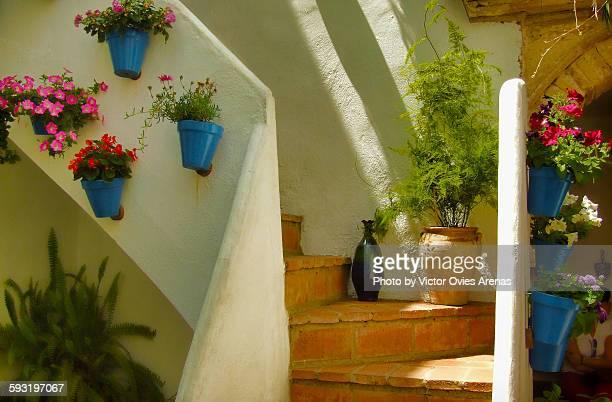 andalusian patio (cordoba) - victor ovies fotografías e imágenes de stock