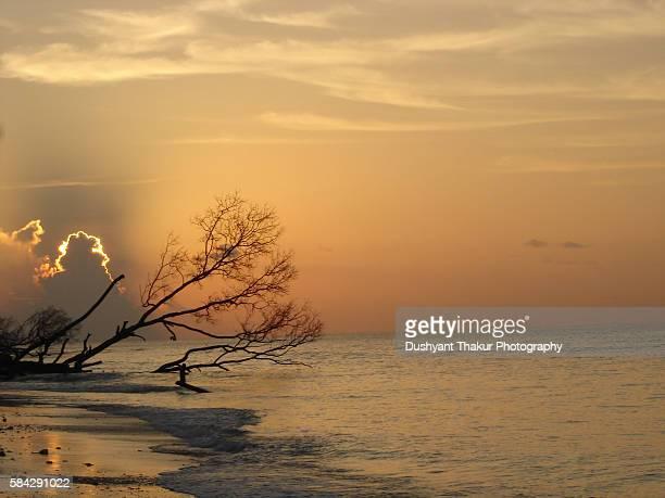 Andamans beach at sunset