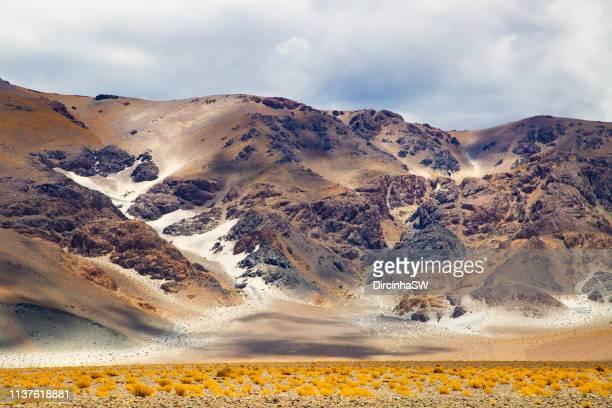 andean landscape, catamarca, argentina. - argentinien stock-fotos und bilder