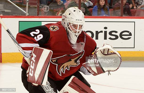 Anders Lindback of the Arizona Coyotes gets ready to make a save against the Ottawa Senators at Gila River Arena on November 28 2015 in Glendale...