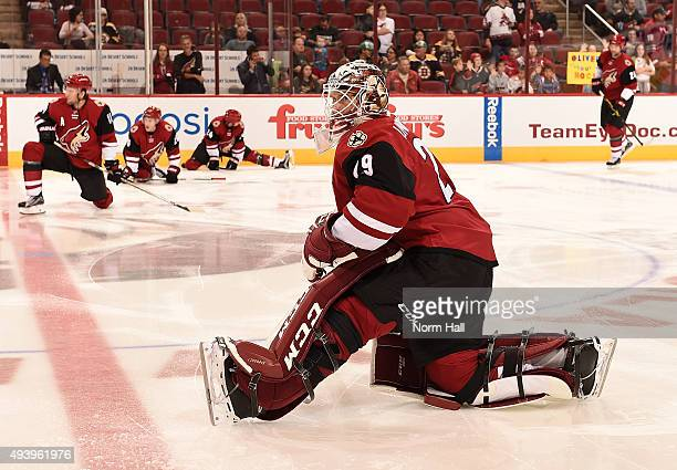 Anders Lindback of the Arizona Coyotes prepares for a game against the Boston Bruins at Gila River Arena on October 17 2015 in Glendale Arizona