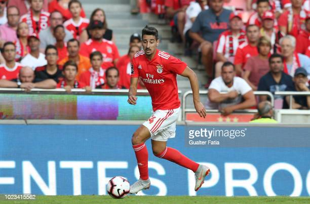 Andre Almeida of SL Benfica in action during the Liga NOS match between SL Benfica and Sporting CP at Estadio da Luz on August 25 2018 in Lisbon...