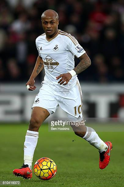 Andre Ayew of Swansea in action during the Barclays Premier League match between Swansea City and Southampton at the Liberty Stadium on February 13...