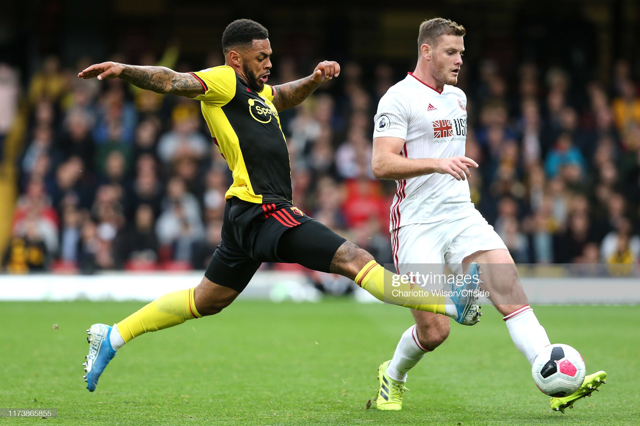 Sheffield United v Watford preview, prediction and odds