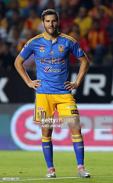 Andre Pierre Gignac of Tigres during their Mexican Apertura 2016 tournament football match against Morelia at the Jose Maria Morelos y Pavon stadium...