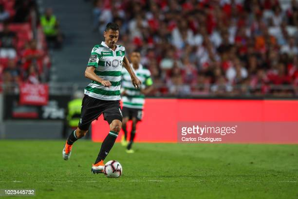 Andre Pinto of Sporting CP during the Liga NOS match between SL Benfica and Sporting CP for the third round of Liga NOS at Estadio da Luz on August...