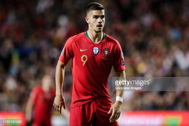 Andre Silva of Portugal during the EURO Qualifier match between Portugal v Ukraine at the Estádio da Luz on March 22 2019 in Lissabon Portugal