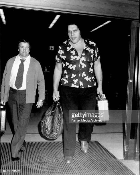 Andre The Giant' 75' tall and 500 lbs Arrived in Sydney this morning for a match against 'Goliath' 7'0' tall and over 500lbs at Flemington Market...