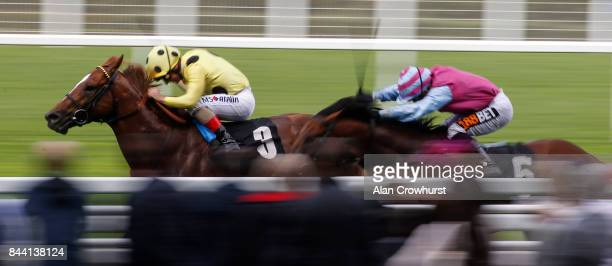 Andrea Atzeni riding Cape Byron win The Leo Bancroft Signature Hair Care Classified Stakes at Ascot racecourse on September 8 2017 in Ascot England