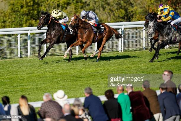 Andrea Atzeni riding Elasia win The TBA thisfillycan Fillies' Handicap Stakes at Goodwood Racecourse on September 26 2018 in Chichester United Kingdom