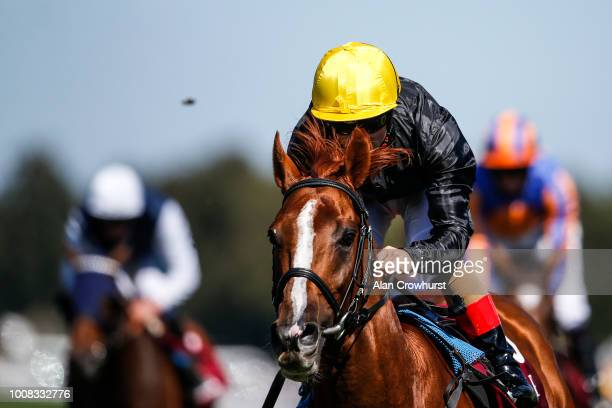 Andrea Atzeni riding Stradivarius win The Qatar Goodwood Cup Stakes at Goodwood Racecourse on July 31 2018 in Chichester United Kingdom