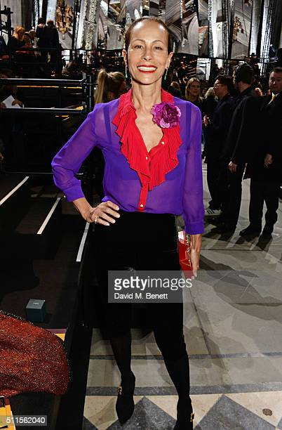 Andrea Dellal attends the Mulberry LFW Autumn/Winter 2016 Show at The Guildhall on February 21 2016 in London England