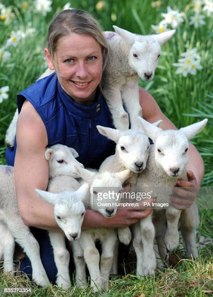 Andrea Jones at Crookham Westfield farm on the Pallinsburn Estate in Cornhill on Tweed Northumberland with six baby lambs from supermum Dolly a...