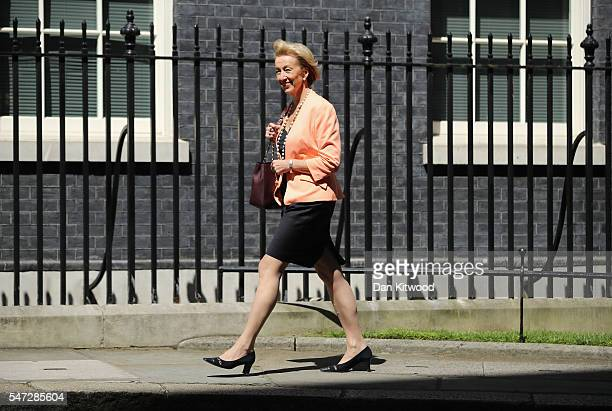 Andrea Leadsom arrives at 10 Downing Street where she was appointed as Environment Secretary as Prime Minister Theresa May continues to appoint her...