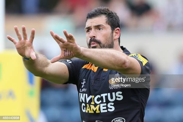 Andrea Masi of Wasps looks on during the Aviva Premiership match between Wasps and Northampton Saints at Adams Park on September 14 2014 in High...