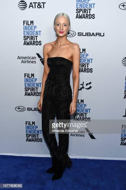 Andrea Riseborough attends the 2019 Film Independent Spirit Awards nominee brunch at BOA Steakhouse on January 5 2019 in West Hollywood California