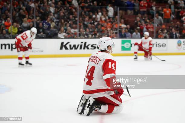 Andreas Athanasiou and Gustav Nyquist of the Detroit Red Wings look on during the third period of a game against the Anaheim Ducks at Honda Center on...