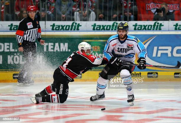 Andreas Falk Koeln and Alexander Oberlinbger of Ingolstadt battle for the puck in game five of the DEL final playoffs between Koelner Haie and ERC...