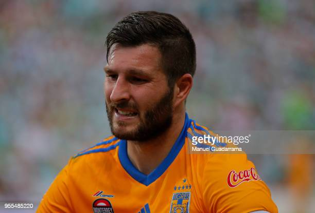 AndrePierre Cignac of Tigres looks on during the quarter finals second leg match between Santos Laguna and Tigres UANL as part of the Torneo Clausura...