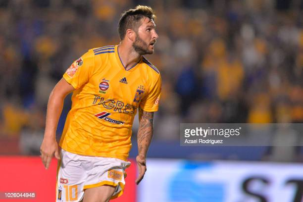 AndrePierre Gignac of Tigres celebrates after scoring his teams second goal during the 6th round match between Tigres UANL and Veracruz as part of...