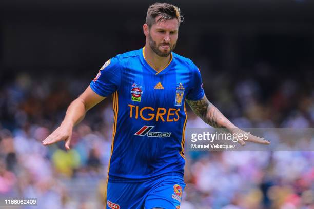 AndrePierre Gignac of Tigres celebrates after scoring the first goal of his team during the 3rd round match between Pumas UNAM and Tigres UANL as...