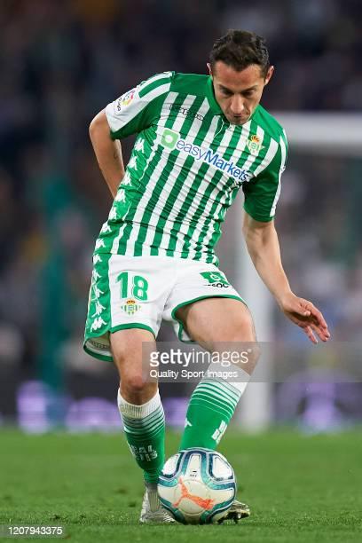 Andres Guardado of Real Betis in action during the La Liga match between Real Betis Balompie and RCD Mallorca at Estadio Benito Villamarin on...
