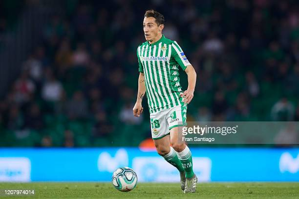 Andres Guardado of Real Betis in action during the Liga match between Real Betis Balompie and RCD Mallorca at Estadio Benito Villamarin on February...