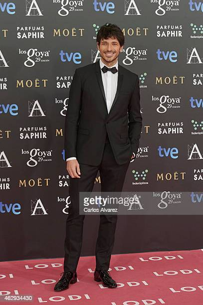 Andres Velencoso attends Goya Cinema Awards 2014 at Centro de Congresos Principe Felipe on February 7 2015 in Madrid Spain