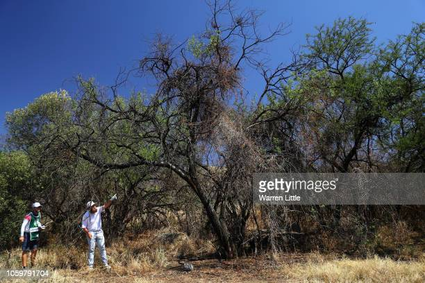 Andrew 'Beef' Johnson of England plays his second shot on the first hole out of the trees during the third round of the Nedbank Golf Challenge at...