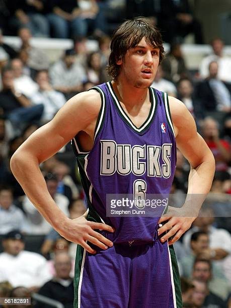 Andrew Bogut of the Milwaukee Bucks stands on the court in the second half of the game against the Los Angeles Clippers on November 15 2005 at...