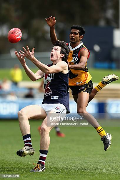 Andrew Brayshaw of Sandringham Dragons contests the ball during the TAC Cup match between Dandenong and Sandringham at Ikon Park on September 11 2016...