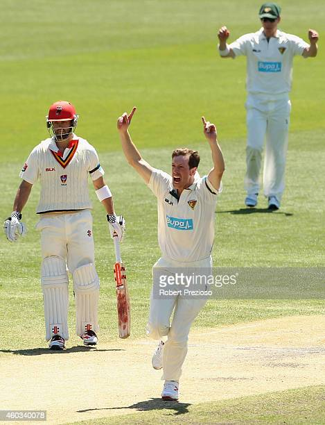 Andrew Fekete of Tasmania celebrates taking the wicket of Johan Botha of South Australia during day four of the Sheffield Shield match between...