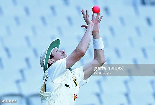 Andrew Fekete of Tasmania takes a catch to dismiss Peter Handscomb of Victoria during day three of the Sheffield Shield match between Victoria and...