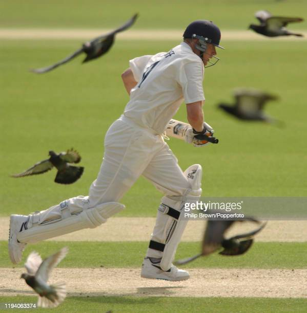 Andrew Flintoff of Lancashire takes a run and scatters the pigeons during his innings of 137 on the first day of the Frizzell County Championship...