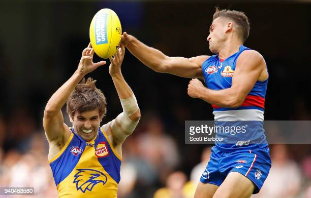 Andrew Gaff of the Eagles and Luke Dahlhaus of the Bulldogs compete for the ball during the round two AFL match between the Western Bulldogs and the...