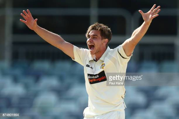 Andrew Holder of Western Australia appeals successfully for the wicket of Callum Ferguson of South Australia during day four of the Sheffield Shield...
