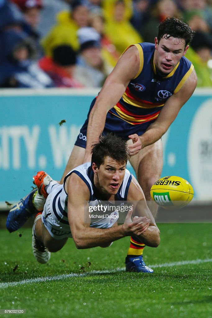 Andrew Mackie of the Cats makes a diving handball during the round 18 AFL match between the Geelong Cats and the Adelaide Crows at Simonds Stadium on July 23, 2016 in Geelong, Australia.