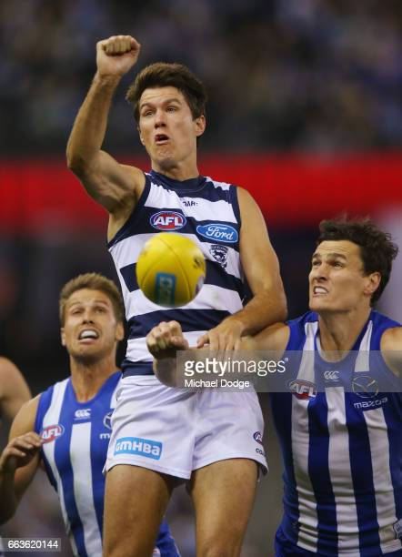 Andrew Mackie of the Cats punches the ball away from Scott Thompson of the Kangaroos during the round two AFL match between the Geelong Cats and the...