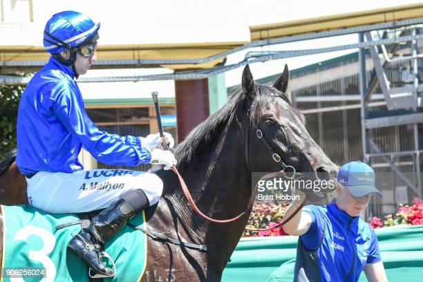 Andrew Mallyon returns to the mounting yard on Haunted after winning the Vale William 'Bill' Harding Maiden Plate at Kilmore Racecourse on January 18...