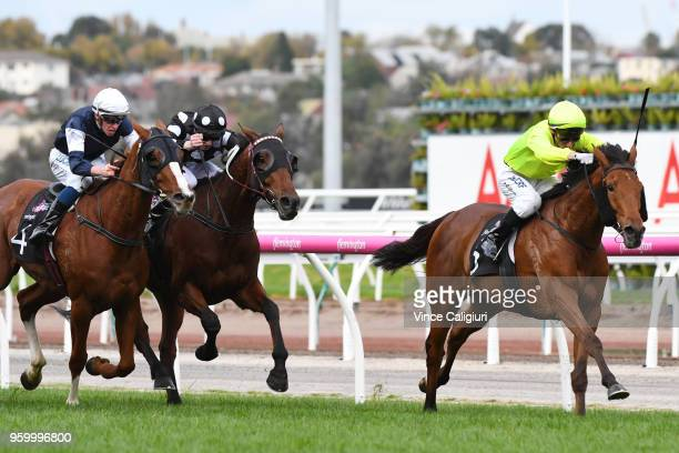 Andrew Mallyon riding Sin To Win winning Race 7 Andrew Ramsden Stakes during Melbourne Racing at Flemington Racecourse on May 19 2018 in Melbourne...