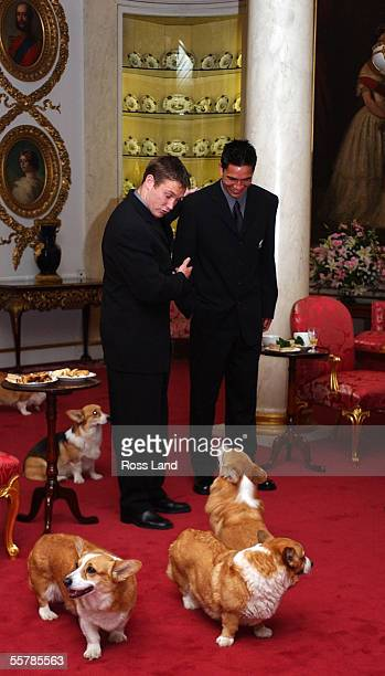Andrew Mehrtens introduces young All Black tourist Regan King to one of Her Majesty Queen Elizabeth II corgies at an afternoon tea for theteam at...