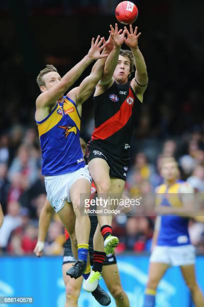 Andrew MGrath of the Bombers and Brad Sheppard of the Eagles compete for the ball during the round nine AFL match between the Essendon Bombers and...