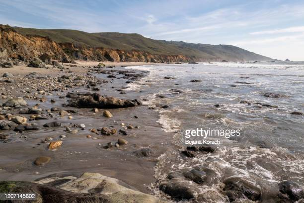 andrew molera beach, big sur, california - state park stock pictures, royalty-free photos & images