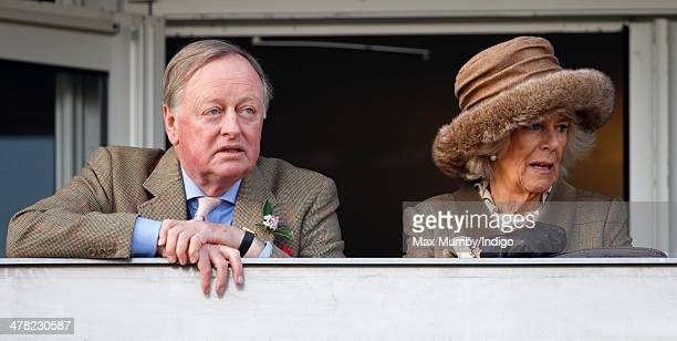 Andrew Parker Bowles and Camilla Duchess of Cornwall watch the racing as they attend Ladies Day day 2 of the Cheltenham Festival at Cheltenham...
