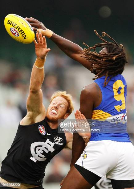 Andrew Phillips of the Blues and Nic Naitanui of the Eagles contest the ball during the round five AFL match between the Carlton Blues and the West...