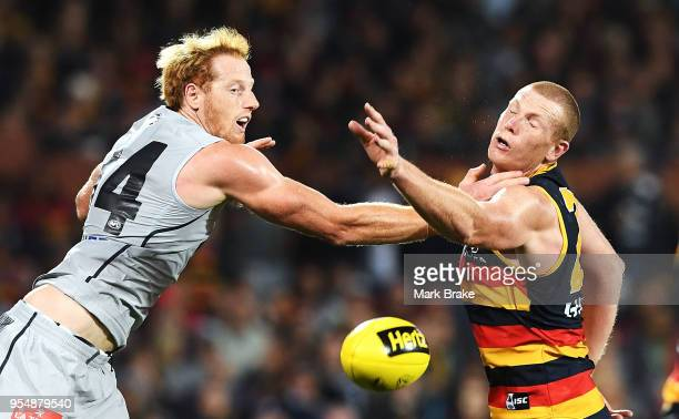 Andrew Phillips of the Blues competes against Sam Jacobs of the Adelaide Crows during the round seven AFL match between the Adelaide Crows and the...