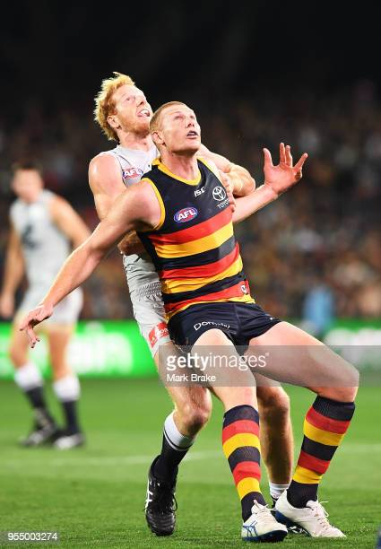 Andrew Phillips of the Blues rucks against Sam Jacobs of the Adelaide Crows during the round seven AFL match between the Adelaide Crows and the...