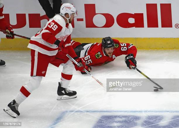 Andrew Shaw of the Chicago Blackhawks controls the puck after falling next to Anthony Mantha of the Detroit Red Wings at the United Center on January...