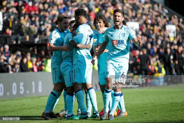 Andrew Surman of Bournemouth celebrates after Jermain Defoe of Bournemouth scores the equaliser during the Premier League match between Watford and...