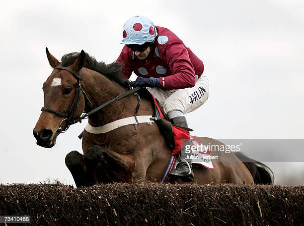 Andrew Thornton and Simon clear the last fence before landing The Racing Post Handicap Steeple Chase Race run at Kempton Racecourse onFebruary 24...